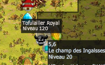 position Tofulailler Royal